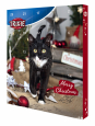 Trixie Advent Calendar for Cats  30×34×3.5 cm