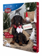Advent Calendar for Dogs  30×34×3.5 cm fra Trixie