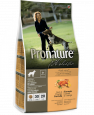 Holistic Adult sans Grain Canard à L'orange Pronature 340 g